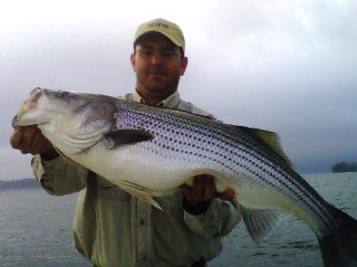 David cochran hot springs arkansas for Lake hamilton fishing report