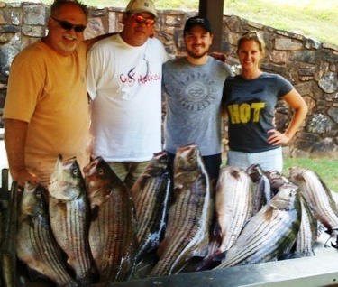 Limit of Striped Bass caught by David Cochran's customers.